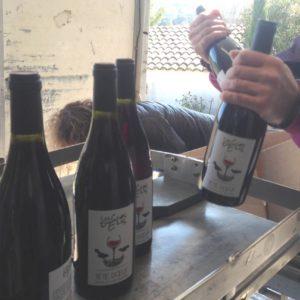 Les vins du Mas de Boissonnade